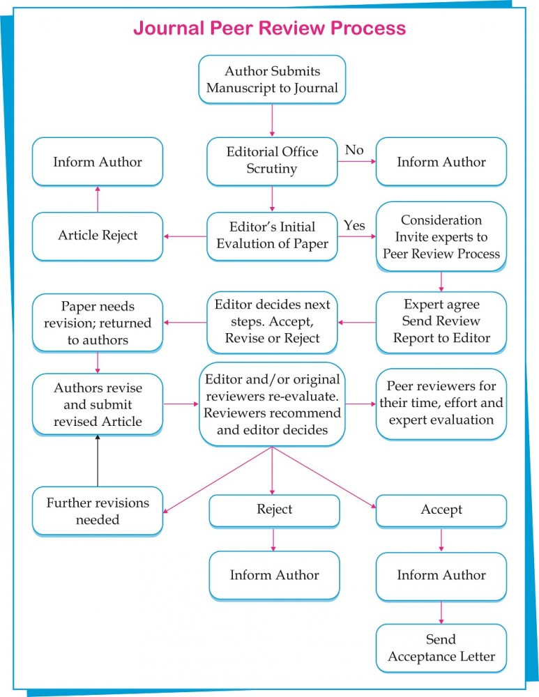 Article peer review process